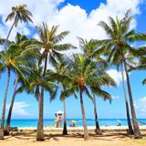【ハワイツアーガイド】ツアー選びのポイントや旅の見どころ・アクセス情報まで!