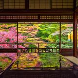 【編集部が厳選】京都で行きたい、お寺と神社