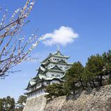 【名古屋観光】2020年3月はここをチェック!