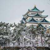【2020年2月版】名古屋の厳選おすすめスポットをご紹介