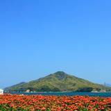 【香川観光】2020年3月はここをチェック!