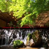 京都の夏の風物詩!納涼床・川床を楽しもう