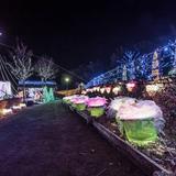 【2020年2月版】定番から穴場まで!宮城県観光スポット紹介