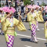 【福岡観光】2020年5月はここをチェック!