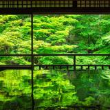 【京都観光】2020年5月はここをチェック!