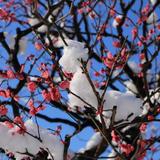 【2020年4月版】定番から穴場まで!長野県観光スポット紹介