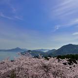 【2020年4月版】定番から穴場まで!愛媛県観光スポット紹介