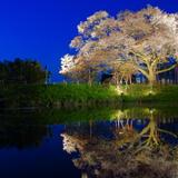 【2020年4月版】福岡の厳選おすすめスポットをご紹介