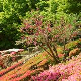 【2020年4月版/福岡女子旅】女子旅で外せないおすすめの観光スポットまとめ!