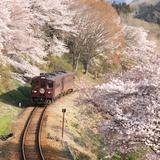 【2020年4月版】定番から穴場まで!群馬県観光スポット紹介