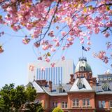 【2020年4月版】定番から穴場まで!北海道観光スポット紹介