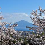 【2020年4月版】定番から穴場まで!鹿児島観光スポット紹介