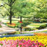 【2020年最新】東京でおすすめの公園25選