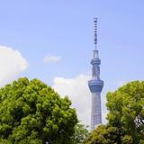 【2020年5月版/東京一人旅】一人旅におすすめの観光スポット!