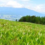 【2020年6月版】定番から穴場まで!長野県観光スポット紹介