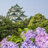 【2020年6月版】名古屋の厳選おすすめスポットをご紹介