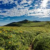 山形県の新型コロナウイルス感染症対策と観光の最新情報(5月4日更新)