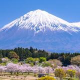静岡県の新型コロナウイルス感染症対策と観光の最新情報(4月12日更新)