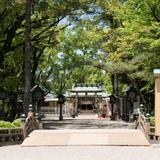愛知県の新型コロナウイルス感染症対策と観光の最新情報(7月26日更新)