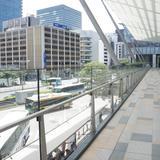 東京駅の高速バス・夜行バス乗り場案内!八重洲南口バスターミナル情報