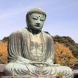 【神奈川観光】2020年10月はここをチェック!