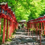 【2020年8月版】京都定番観光スポット紹介