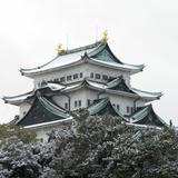【名古屋観光】2020年12月はここをチェック!