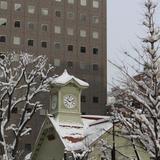 【北海道観光】2021年1月はここをチェック!