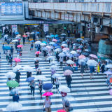 【雨の日大阪観光】雨でも満喫できるおすすめ観光スポットをご紹介