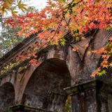 【秋の京都に行くならココ】祗園・東山の秋観光で行きたいおすすめスポットを紹介!