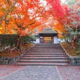【秋の京都観光】下鴨神社・銀閣寺・京都御苑のおすすめ紅葉&グルメスポットまとめ
