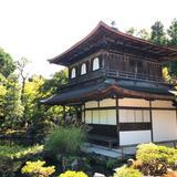 【雨の京都】しっとり楽しむ!下鴨神社・銀閣寺・京都御苑のおすすめスポットをご紹介