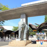 【多摩動物公園の楽しみ方完全ガイド】子ども連れの方におすすめの動物やスポット情報満載!