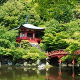【京都カップル観光】デートにおすすめ!宇治・伏見の観光スポットをご紹介!