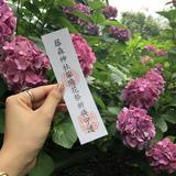 【雨の日京都】突然の雨でも安心!宇治・伏見のおすすめスポットをご紹介