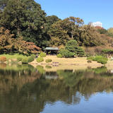 【新宿御苑の楽しみ方完全ガイド】四季折々の自然が楽しめる人気観光スポット