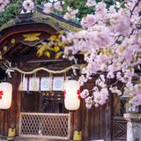 【京都女子旅】かわいい着物で!金閣寺・上賀茂神社・龍安寺のおすすめスポットをご紹介!