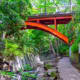 【等々力渓谷の楽しみ方完全ガイド】お散歩やデートにも!都会の中で自然を満喫