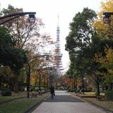 【芝公園の楽しみ方完全ガイド】東京タワーフォトスポットや周辺ランチ情報が満載!