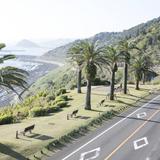 【宮崎県のおでかけ・観光マップ】地図から名所や周辺おすすめ情報を探そう!