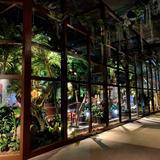 【オービィ横浜の楽しみ方完全ガイド】映像×大自然の体験型パークの見どころを紹介!