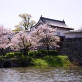 【2020年3月版】福岡の厳選おすすめスポットをご紹介