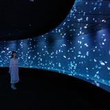 天空のオアシス・サンシャイン水族館に誕生!国内最大級のパノラマ水槽「海月空感」