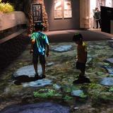 """デジタル技術やクイズで世界最大級の両生類""""オオサンショウウオ""""を楽しく学ぶ!京都水族館でイベント開催"""