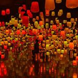 佐賀・武雄温泉で開催中のアート展「チームラボ かみさまがすまう森」に秋の作品が登場
