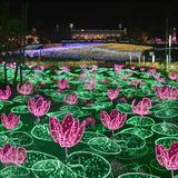 沖縄県最大280万球!植物園ならではのイルミネーション「ひかりの散歩道2020-21」開催!