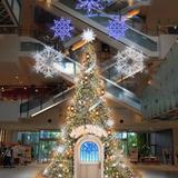 イルミネーションや限定メニューを楽しむクリスマスイベントが「MARK IS みなとみらい」で開催!