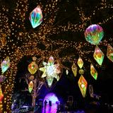 日本有数の規模を誇る光の大空間!今年も江の島でイルミネーションイベント「湘南の宝石」開催