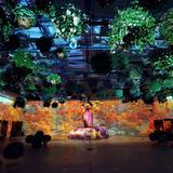 幻想的で没入型空間を楽しめる「花とデジタルのアートショー」に秋・冬の新ストーリーが登場!