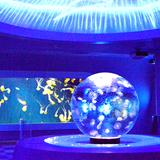 「新江ノ島水族館」で宝石をテーマにしたイベント開催!特別水槽にオブジェにフードメニューなど盛り沢山